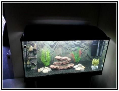 Галька для аквариума.jpg